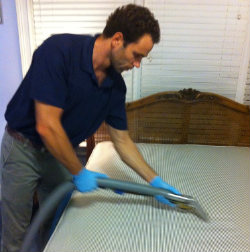 Mattress Steam Cleaning